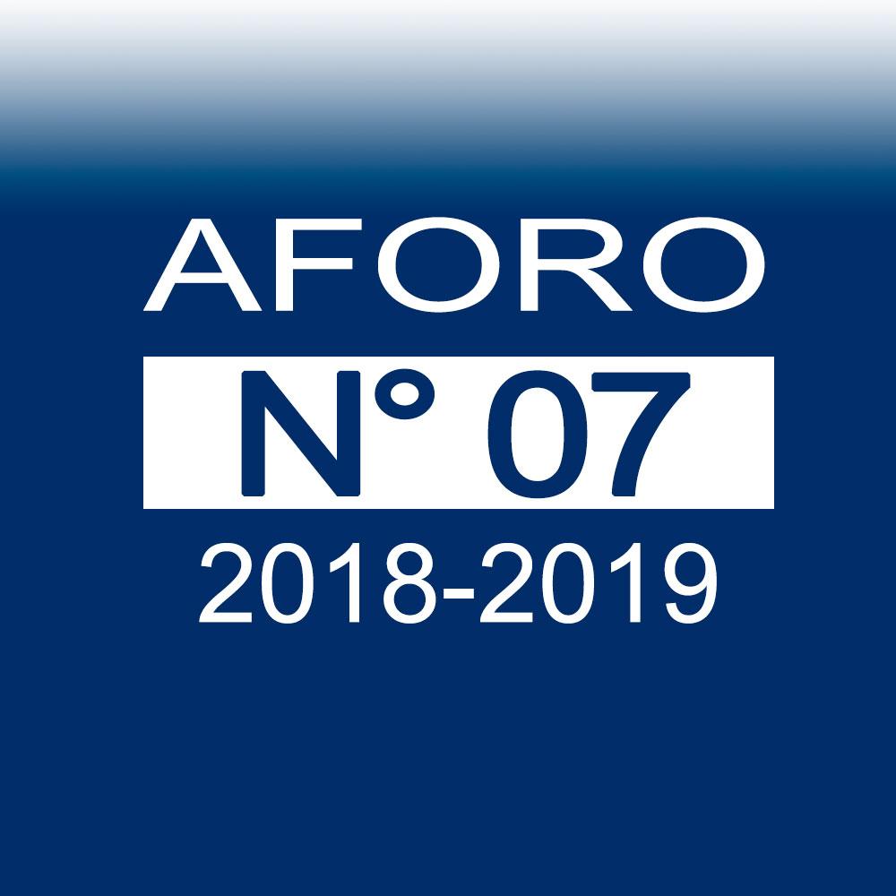 AFORO N° 7 – 29 de noviembre de 2018