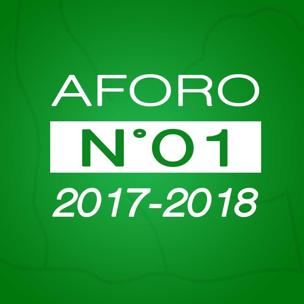 Aforo N° 01 – 24 de octubre de 2017