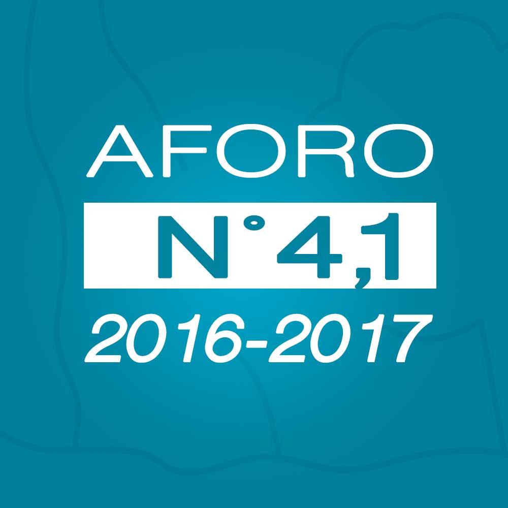 Aforo N° 4.1 – 17 de noviembre de 2016
