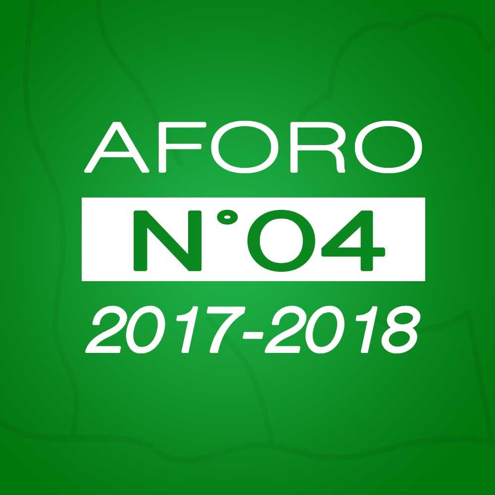 Aforo N° 04 – 15 de noviembre de 2017