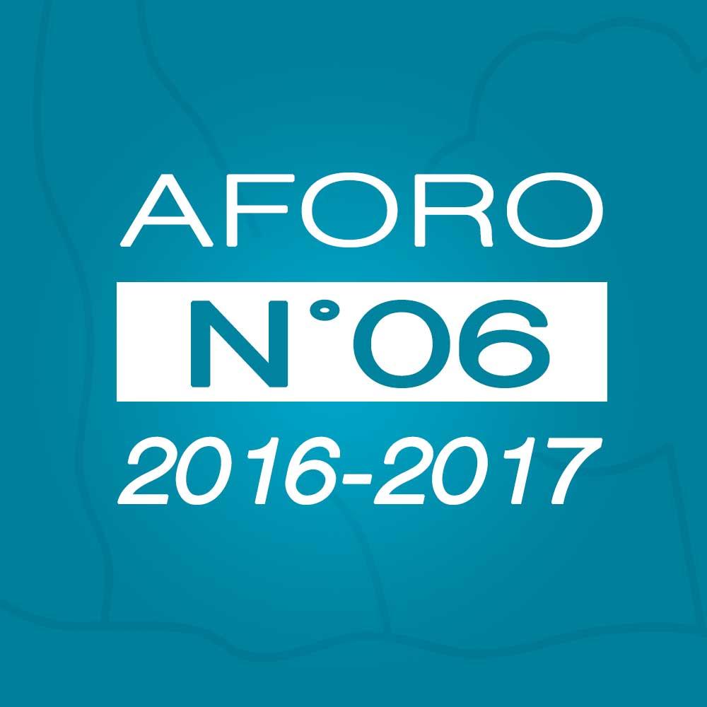 Aforo N° 06 – 30 de noviembre de 2016