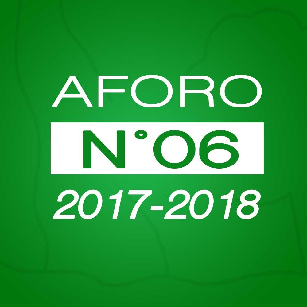 Aforo N° 06 – 29 de noviembre de 2017