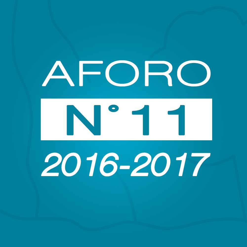 Aforo N° 11 – 03 de enero de 2017