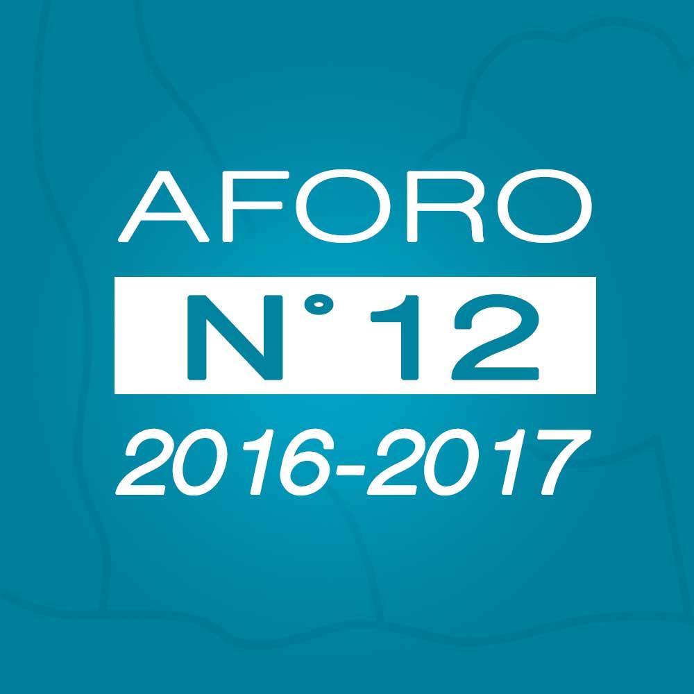 Aforo N° 12 – 10 de enero de 2017