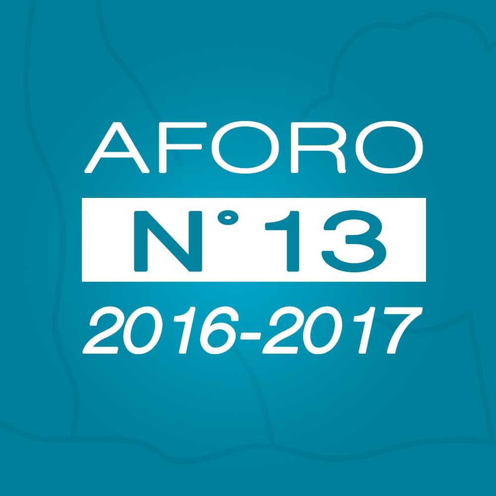Aforo N° 13 – 17 de enero de 2017